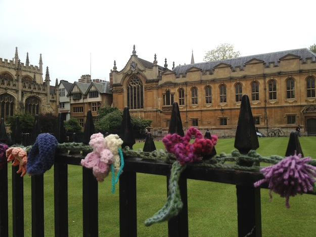 Knit Bombing at Radcliffe Square, Oxford
