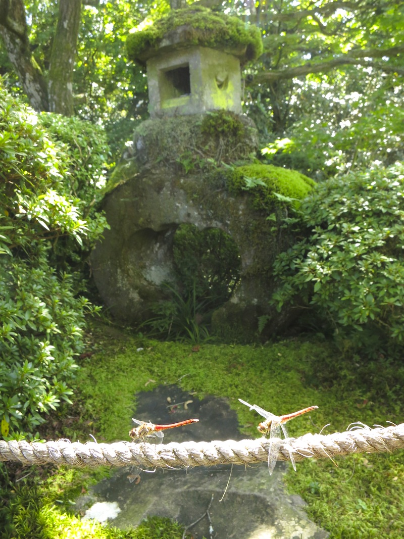 Shouyoen Garden of the Rinnoji Temple, Nikko, Japan
